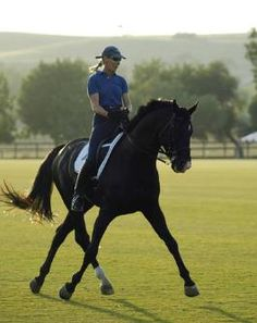 So beautiful... would love to master this and feel this connection with horse and rider!!! Awesome...