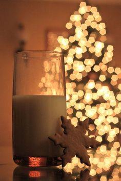 Unique Outside DIY Christmas Lights on a budget Diy Christmas Lights, Christmas Mood, Merry Little Christmas, All Things Christmas, Christmas Decorations, Xmas Holidays, Xmas Ornaments, Happy Holidays, Christmas Ideas