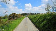 Lane near Trethin, Cornwall