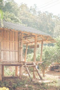Doi Inthanon National Park Chiang Mai Thailand Olivia Poncelet blog