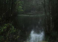 Dark Green Aesthetic, Nature Aesthetic, Deep Forest, Forest Fairy, Twilight, Looks Dark, Dark Paradise, All Nature, Dark Places