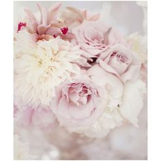 Simply Seductive: Inspiration: {An Alluring Selection} ❤ liked on Polyvore featuring flowers, backgrounds, pictures, photos and pink