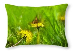 Throw pillow with image of butterfly sitting on dandelion flower for sale in diferent sizes