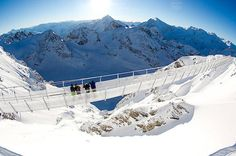 Mount Titlis and Lucerne Day Tour Including Cable Car Ticket Explore Lucerne, Engelberg and Titlis Mountain on this day tour. Spend 2-hours traversing through Lucerne, one of the world's prettiest cities. Then spend 2-hours exploring Engelberg and Mount Titlis, including a daring cliff walk.Visit the beautiful city of Lucerne, as well as Engelberg and Mount Titlis on this day tour. First explore the cultural and historical sites of Lucerne and absorb the city's cha...