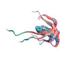watercolor octopus - Google Search