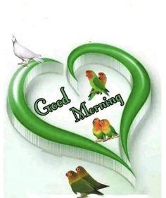 Good Morning Roses, Good Morning Photos, Morning Msg, Morning Quotes, Good Morning Gif Animation, Happy Birthday, Album, Gallery, Good Morning Wishes