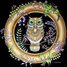 Enchantedforest Owlcoloring Enchantedforestowl Johannabasford Adultcoloring Coloringforadults On Johanna Basfords Colouring