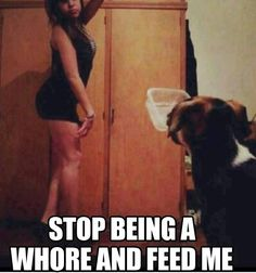 Pets of selfie girls // funny pictures - funny photos - funny images - funny pics - funny quotes - #lol #humor #funnypictures