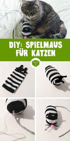 DIY: So einfach bastelst Du eine Spielzeugmaus für Deine Katze. #bastelidee #haustier #diy #maus #Spielmaus #kreativ #basteln #tier #katzenspielzeug