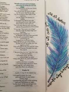 Bible art journaling, illustrated faith. Psalm 91:4 I love the thought of finding refuge under the wings and feathers of God. By Lynn Egigian