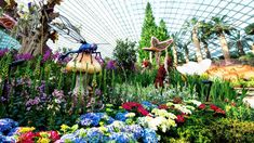 Enter a world of perpetual spring, where unique plants bloom in the largest glass greenhouse in the world, Flower Dome, as listed in the 2015 Guinness World Records