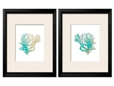 Antique Illustration Sea Coral Print Set of Two 8x10 Coral