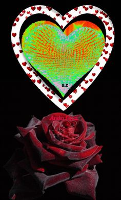 Heart Images, Love Images, Mothers Day Roses, Love You Gif, Morning Texts, Text For Her, Beautiful Rose Flowers, I Love Heart, 3d Girl