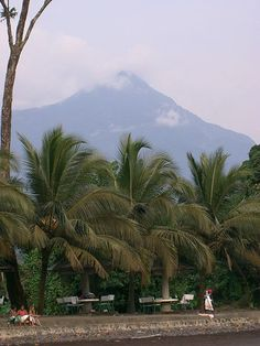 A view of Mount Cameroon from Limbe