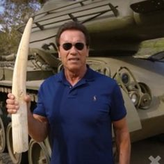 Arnold Schwarzenegger Intends To Terminate The Illegal Ivory Trade