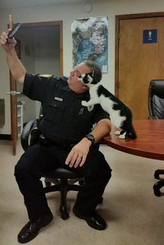 Stray Cat Wanders Into Police Station and Decides to Pose for Selfies..