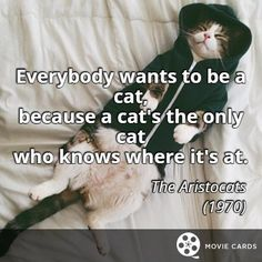 Everybody wants to be a cat. #Caturday #QuoteCards