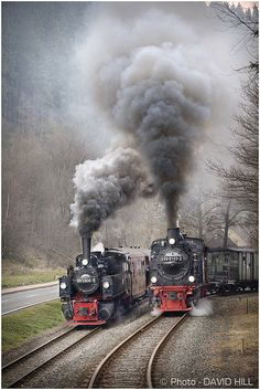 """Neck And Neck"" ~ There are a couple of locations on the Harz railway system where one can witness a double departure. This one is at Alexisbad where the 0-6-0 tank and the Mallet (left) vie for honors before the tracks diverge. ~ April 2009. © David Hill."