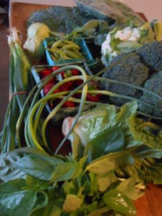 June 11, 2014: Collards, mixed baby greens, scallions, kohlrabi, sugar snap peas, cauliflower, garlic scapes, strawberries, broccoli, romaine lettuce, basil. Brassica central! A scape is the stalk garlic shoots up to make a flower; these are trimmed to encourage the bulb to grow bigger. Scapes are spicy and crisp when raw but can be chopped and cooked like asparagus. Kohlrabi is a bulbous Brassica with crisp white flesh. You can cook it like a turnip but I always eat them raw, like radishes.