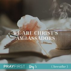 Pray First Day 5: We Are Christ's Ambassadors To pray for Gods Kingdom to come but to do nothing to participate in that process is to miss the heart of God. The reason that God leaves us on earth once we become a Christian as opposed to zapping us right up to heaven is that we have a job to do. He wants to use our lives to spread His love and shine His light in real and tangible ways. Join us for today's reading on the blog. How are you spreading His love and light in this world? Link in bio…
