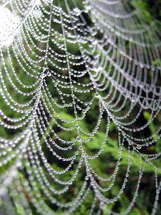 spiderweb - looks like a diamond strand necklace