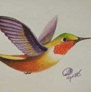 Colored Hummingbird I Print by Jennifer Lynn Butler