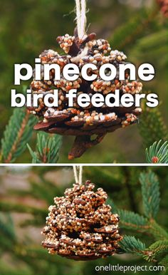 These pinecone bird feeders are SO PRETTY and they're so easy to make! With just a few simple supplies you can make one in less than 10 minutes! It's a great craft for kids, tweens, teens, adults, sen Sharpie Crafts, Cork Crafts, Fun Crafts, Paper Crafts, Pine Cone Bird Feeder, Bird Feeder Craft, Garden Bird Feeders, Pinecone Crafts Kids, Holiday Crafts