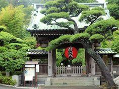 鎌倉物語 長谷寺にて | pansatoshiのブログ