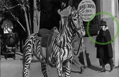 Teléfono - En una película de Charle Chaplin parece haber una mujer llamando por teléfono, lo curioso es que en ese entonces los teléfonos celulares aún no existían. Charlie Chaplin, Mystery, Movies, Blog, Filing Cabinets, True Stories, Time Travel, Jokes, Pictures
