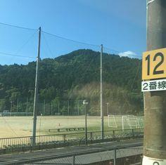 たまたま見かけた12番