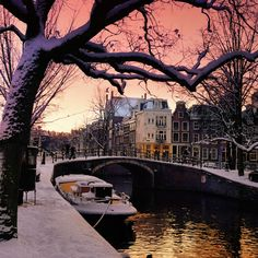 Twinkling winter light dangle over the canals of Amsterdam