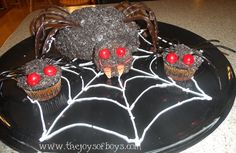 Spider cake and spid