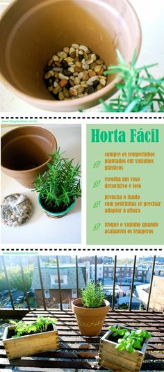 horta-fácil-blog-da-mimis-michele-franzoni