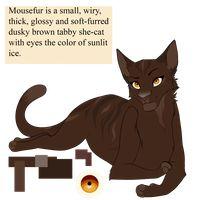 Mousefur by PureSpiritFlower