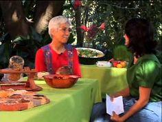 TERRAPIA - Alimentação Viva na promoção da Saúde - parte 2 - YouTube