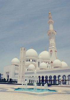 advocateur:    Sheikh Zayed Mosque