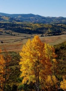 Great fall color hikes in Northern New Mexico.
