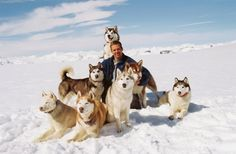 Eight Below movie, I love this movie!! :) 'What's important is finding that one thing, which will truly put your heart at rest'