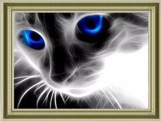Cheap 5d diamond mosaic, Buy Quality diamond mosaic directly from China painting cross stitch Suppliers: Art diy diamond embroidery blue-eyed cats handmade diamond painting cross stitch kits 5d diamond mosaic patterns rhinestones