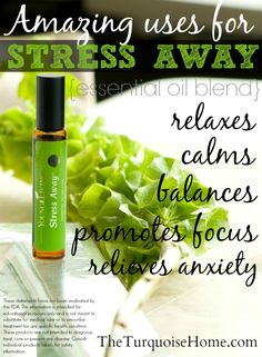 The Amazing Uses of Stress Away Essential Oil Blend