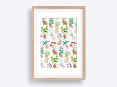 Handpicked Herbs A4 Wall Art Print - Watercolour Illustration featuring Medicinal Floral Herbs
