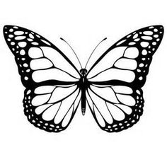 butterfly outline wings - Yahoo Image Search Results