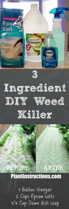 This DIY weed killer only uses 3 all natural ingredients and will eliminate all weeds within a few days! Super cheap to make and 100 safe! Diy Garden, Lawn And Garden, Garden Projects, Garden Landscaping, Garden Ideas, Organic Gardening, Gardening Tips, Vegetable Gardening, Vegetables Garden