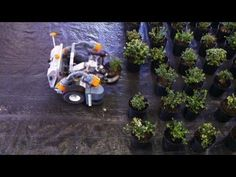 Robot Farming and the Future of Food: Hard Work on Wheels