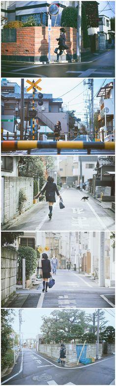 上学路上 - 日本, 吴旻, 苍旻之鹰, 林初寒 - 苍旻之鹰 - 图虫摄影网