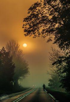 i wonder where this foggy road leads  me to... amazing foggy sunrise !!!