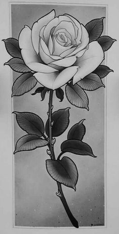 96 best rose drawing tattoo images in 2018 Rose Drawing Tattoo, Tattoo Sketches, Tattoo Drawings, Art Sketches, Pencil Drawings, Rose Tattoos, Flower Tattoos, Body Art Tattoos, Rose Zeichnung Tattoo