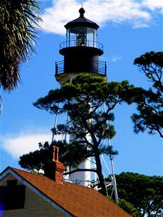 Cape San Blas, Fl  lighthouse: the first picture I took of the light house. It has now been moved to town in Port St Joe.