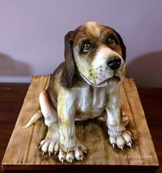 Beagle Dog Cake  by Callicious Cakes  …See the cake: http://cakesdecor.com/cakes/221783-beagle-dog-cake