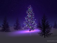 christmas scenes pictures | Beautiful Christmas Scene